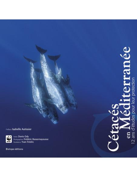 Cétacés en Méditerranée - 12 ans d'études pour leur protection