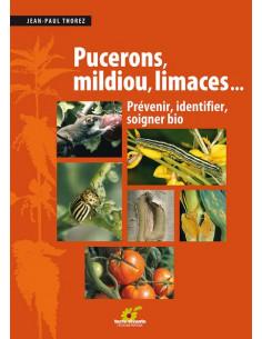 Pucerons, mildiou, limaces... Prévenir, identifier, soigner bio