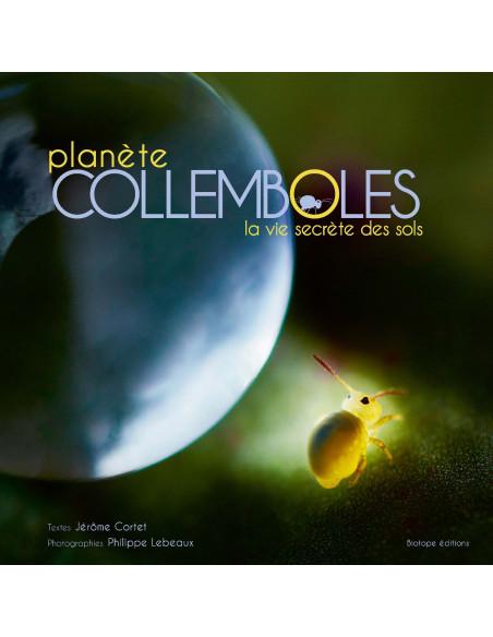 Planète COLLEMBOLES - La vie secrète des sols