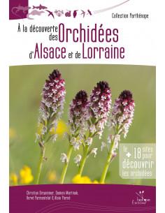 À la découverte des Orchidées d'Alsace et de Lorraine