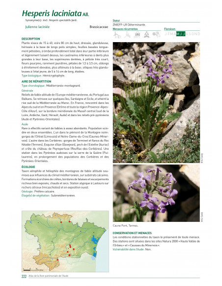 atlas-de-la-flore-patrimoniale-de-l-aude