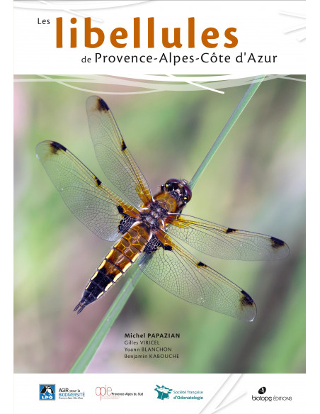 Les libellules de Provence-Alpes-Côte d'Azur