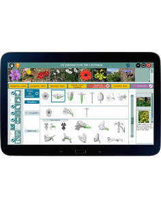 FloreNum - Logiciel botanique d'identification