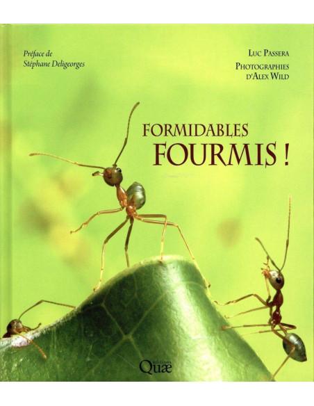 Formidables fourmis!