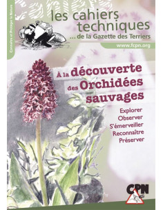 À la découverte des orchidées sauvages