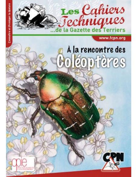 A la rencontre des coléoptères