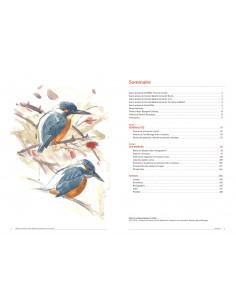 Oiseaux de Franche-Comté - Répartition, tendance et conservation