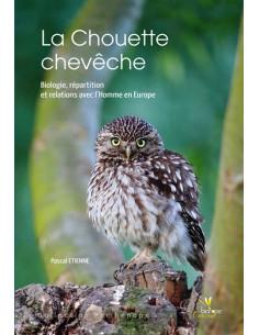 LA CHOUETTE CHEVECHE