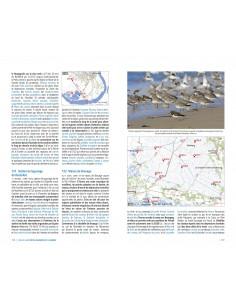 Observer les oiseaux en France - Plus de 300 spots ornitho