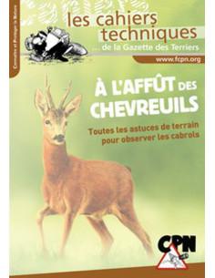 A l'affût des Chevreuils