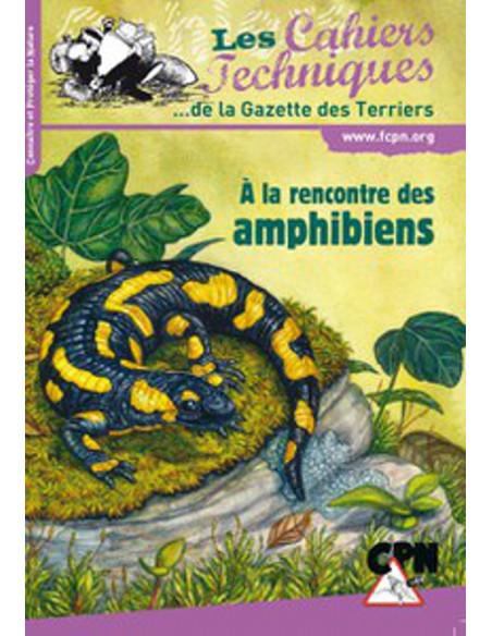 A la rencontre des amphibiens