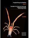 Tropical Deep Sea Benthos Volume 30
