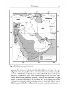 Venomous terrestrial Snakesof the Middle East