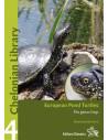 European Pond Turtle - Emys orbicularis