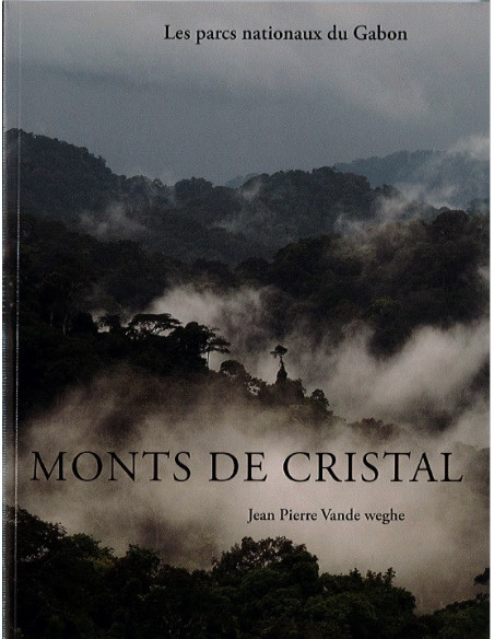 Monts de cristal - parc national du Gabon