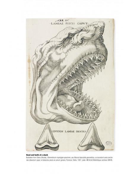 Tableau historique des progrès de l'ichtyologie depuis son origine à nos jours
