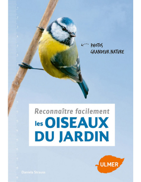 Reconnaître facilement les oiseaux du jardin