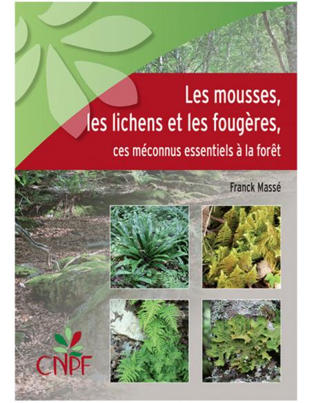 Les mousses, les lichens et les fougères - Ces méconnus essentiels à la forêt