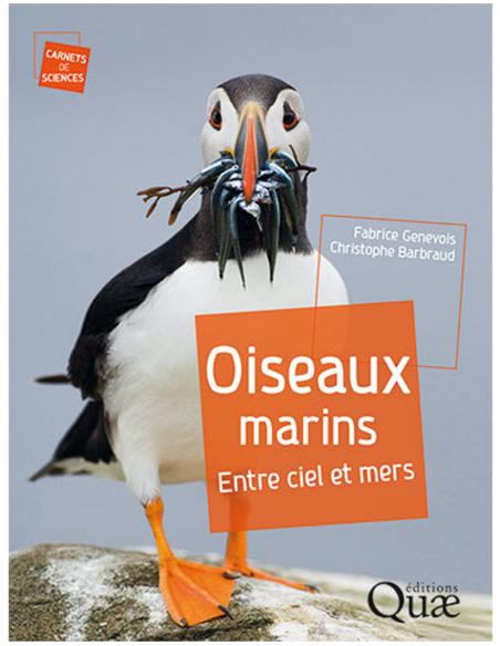 Oiseaux marins - Entre ciel et mers