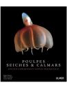 Poulpes, seiches et calmars - Biologie, comportement, espèces remarquables