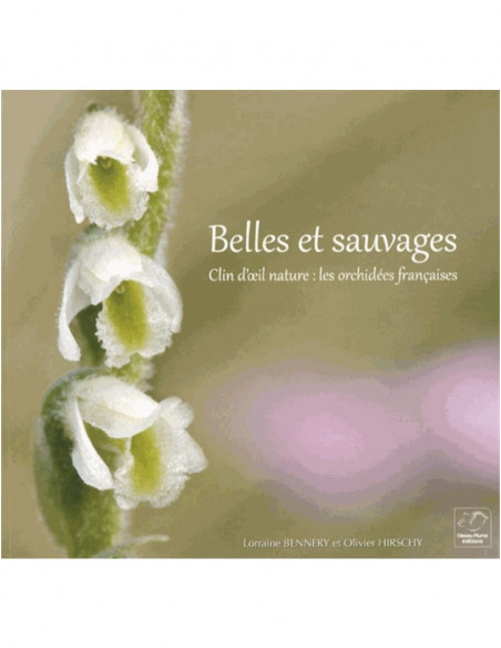 Belles et sauvages, clin d'œil nature : les orchidées françaises