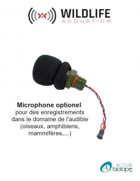 Microphone acoustique pour Song Meter Mini ou Mini BAT - EN STOCK