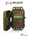 Détecteur et enregistreur d'ultrasons SM4BAT Full Spectrum (FS)