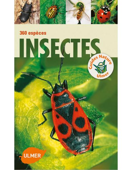 Insectes - 360 espèces ulmer