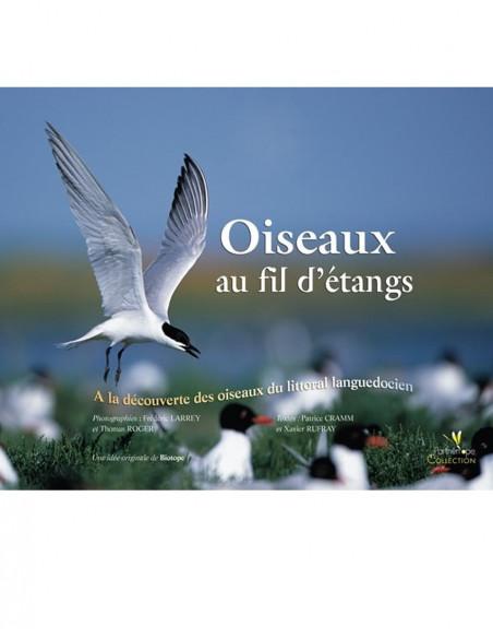Oiseaux au fil d'étangs : à la découverte des oiseaux du littoral languedocien