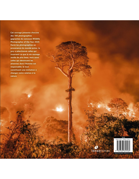 Wildlife Photographer of the Year 2020 - Les plus belles photos de nature
