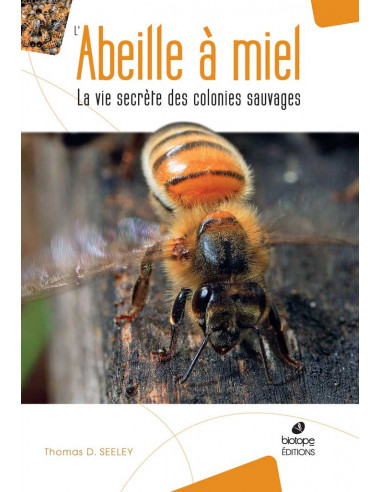 L'Abeille à Miel - La vie secrète des colonies sauvages