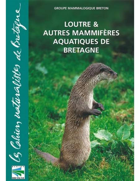 Loutre et autres mammifères aquatiques de Bretagne