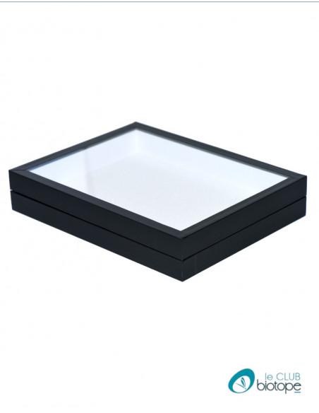 Black entomological box with glass lid 23x30x5,4 cm