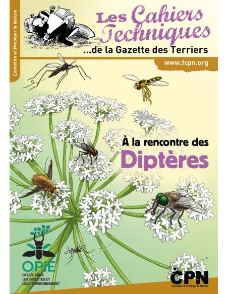 A la rencontre des diptères