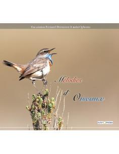 Guide sonore (CD) mélodies d'oiseaux