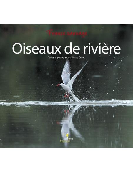 Oiseaux de rivière