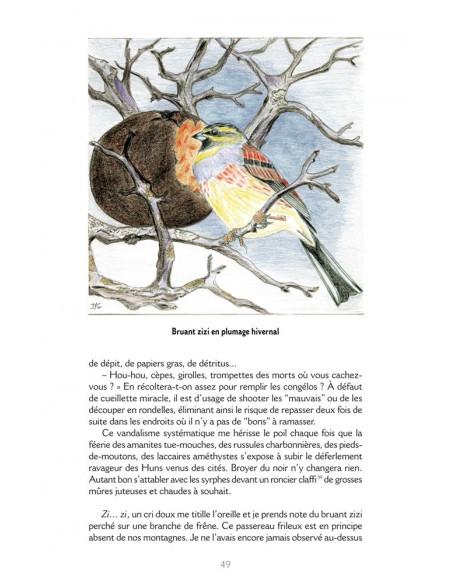 Morceaux choisis d'un ornitho sédentaire