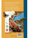 Les Papillons de jour du Maroc - Guide d'identification et de bio-indication
